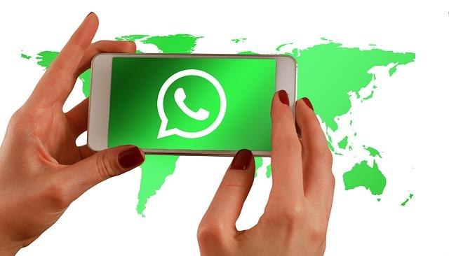 Ternak Group Whatsapp